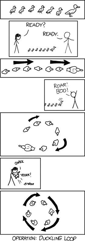 duckling_loop